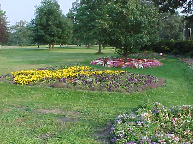 Landscaping in the park
