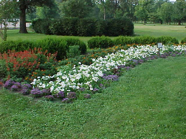 Riverview Park flower bed