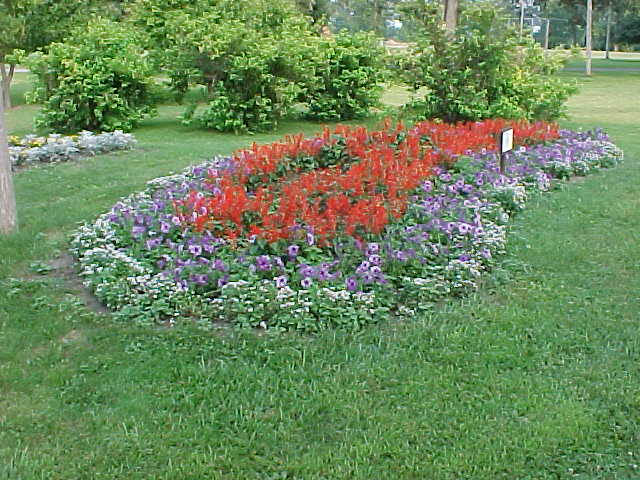 Flower bed in Riverview Park